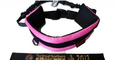 Limited Edition Walking Belt and Lead Set