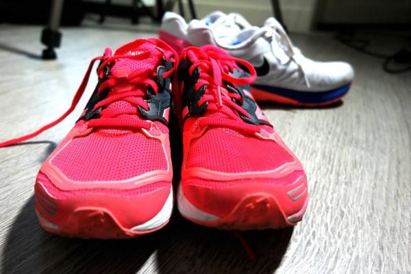 danielle schoenen
