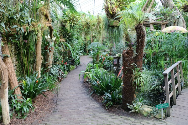 tropische_tuinen__orchideeen_hoeve_luttelgeest