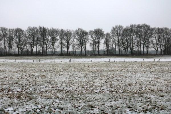 drachten-7-januari-2017-winter-sneeuw