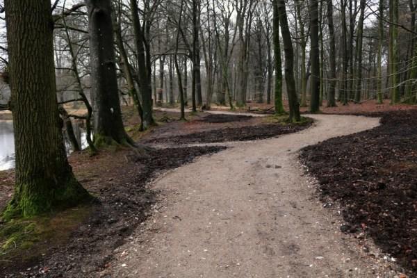 olterterp bos verhade paden wandelen