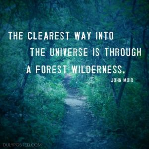 37819--is-through-a-forest-wilderness-quote-by-john-muir-duly-posted-wallpaper-610x610 (1)