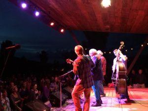 ridgway bluegrass