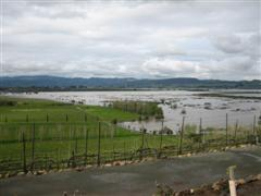 Farm under water