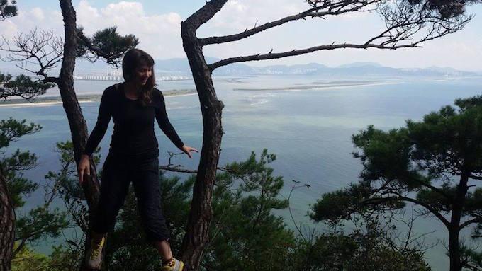 Rhea gadeok island