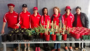 Photo of Woodside volunteers potting for the greenhouse.