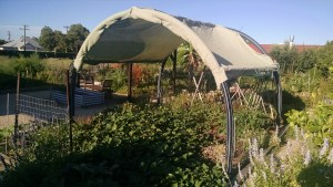 Photo of prototype shade structure.