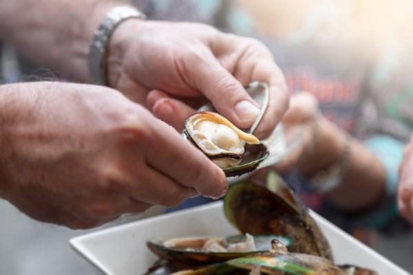 https://i1.wp.com/www.northshoredailypost.com/wp-content/uploads/2019/11/Shellfish-poisoning.jpg?fit=600%2C400&ssl=1
