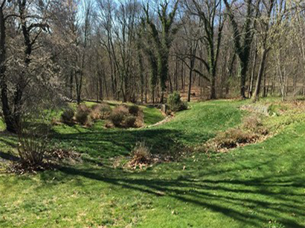 Cushman-Woods