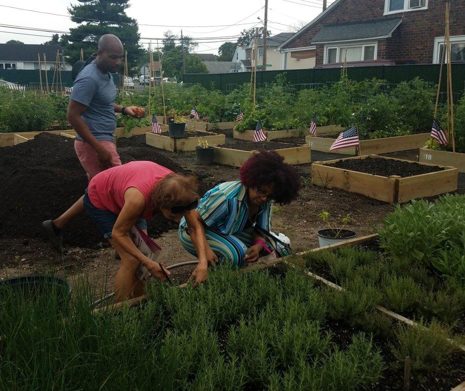 Roosevelt-Community--Garden