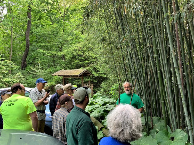 Humes Japanese Stroll Garden – Japanese Storytelling and Nature Walk