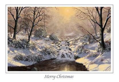 Morning Glory Christmas Card
