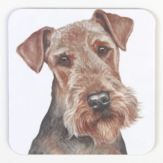 Airedale Terrier Coaster