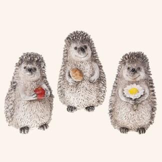Happy Hedgehogs Medium