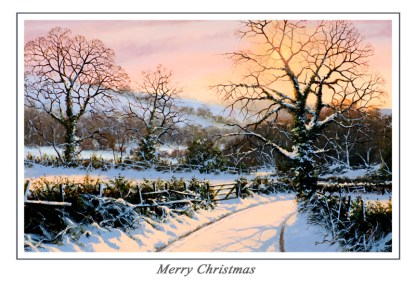 Winter Solace Christmas Card
