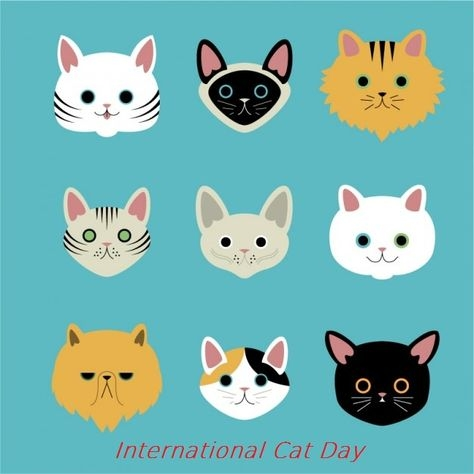 International Cat Day #3