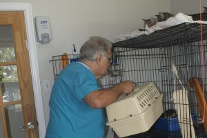 Her crate is emptied to make room for the carrier.