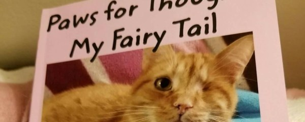 Paws for Thought – My Fairy Tail by Melody Karwowski