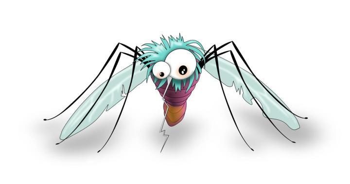 Mosquito-01