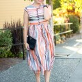 transitioning into fall with color