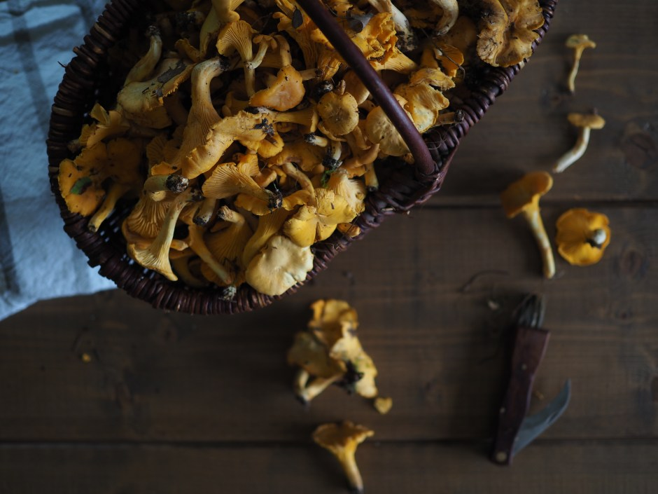 Skillet Chantarelle and Cheese Fondue (Kantarelle med Geitost)