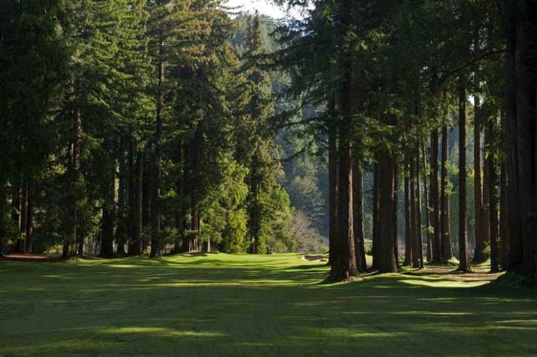 Image result for northwoods golf course
