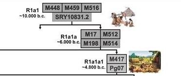 R1a SNP top
