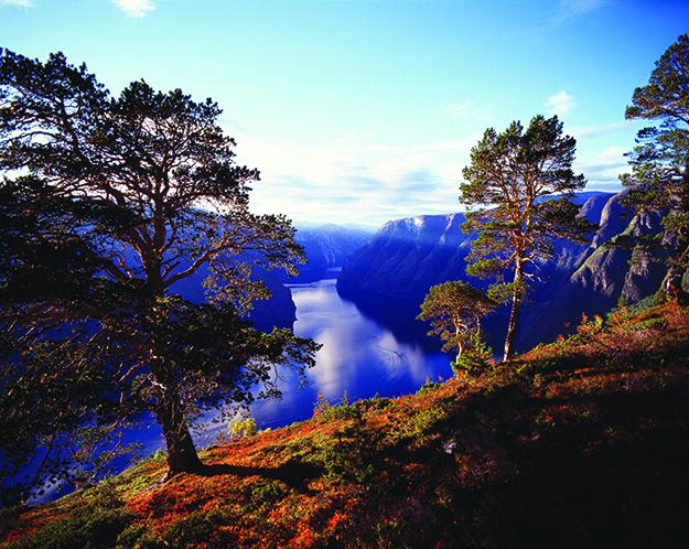 Photo: Frithjof Fure / Visitnorway.com Autumn in Aurland is a lovely time to hike.