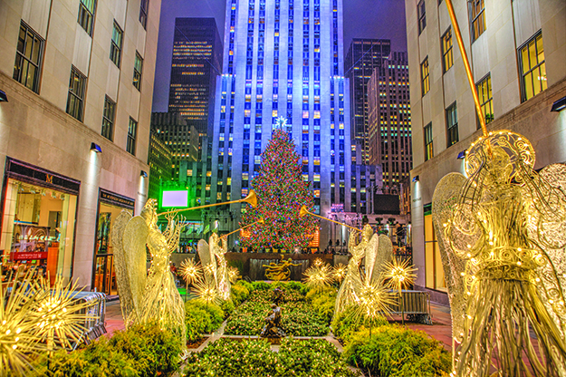Photo: Anthony Quintano More lights than tree: five miles of LED lights, powered by solar panels, adorn each year's tree. Pictured here is the tree from 2013, also a Norway Spruce.
