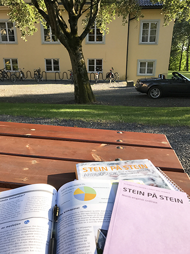 A few books with the university in the background.