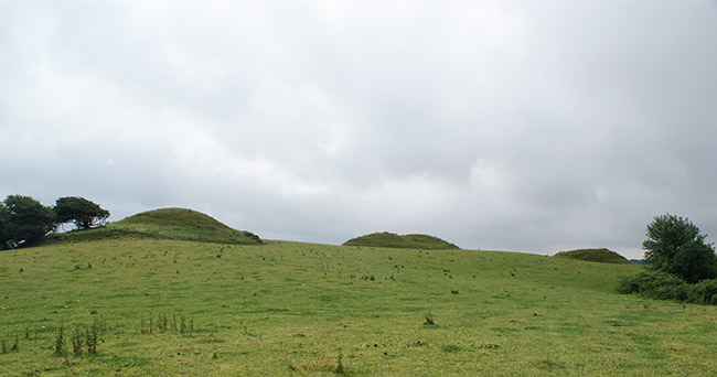 Bronze Age burial mounds