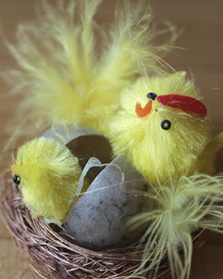 Påske - Easter chicks