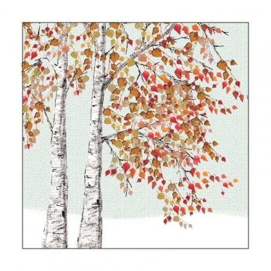 x411_silver_birches