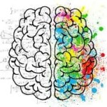 Book Nutrition: Different Ways to Feed the Brain