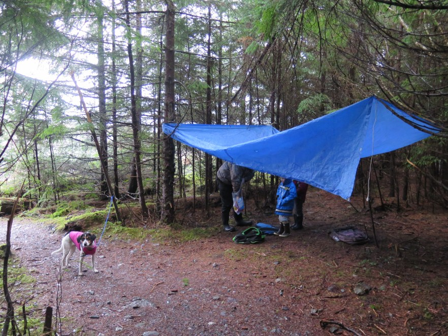 That time we tried to hike a trail when it was cold and raining, when I unwittingly sat on our snacks and our tarp kept leaking water. Fun times!!