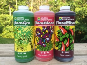 Review of General Hydroponics Flora Series Nutrients