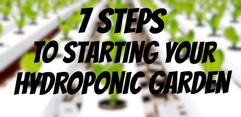 7 Steps to starting a hydroponic garden