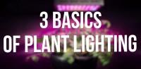 3 basis of plant lighting