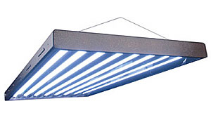Fluorescent Tube Grow Light