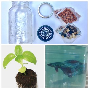 supplies to build a glass jar aquaponics system