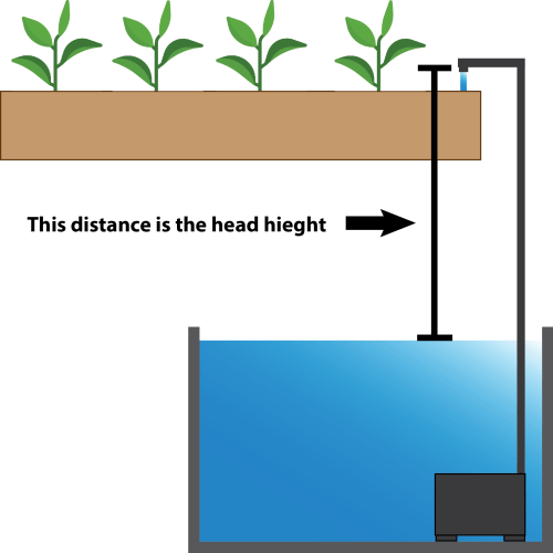 How to determine hydroponic water pump head height.