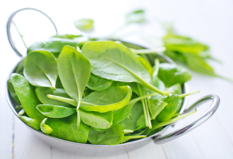 hydroponic spinach
