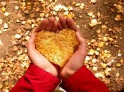 Lo que debes saber de la Hipertensión Arterial. Tips naturales