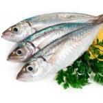 No excluyas al Pescado de tu Dieta. Es muy beneficioso para la salud