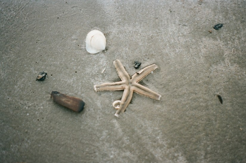 Port Aransas film photography