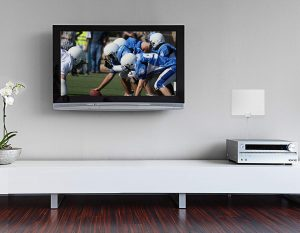 Mohu Leaf TV Antenna on Living Room wall