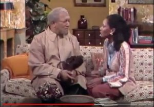 Sanford-and-Son-Lamont-In-Love-couch