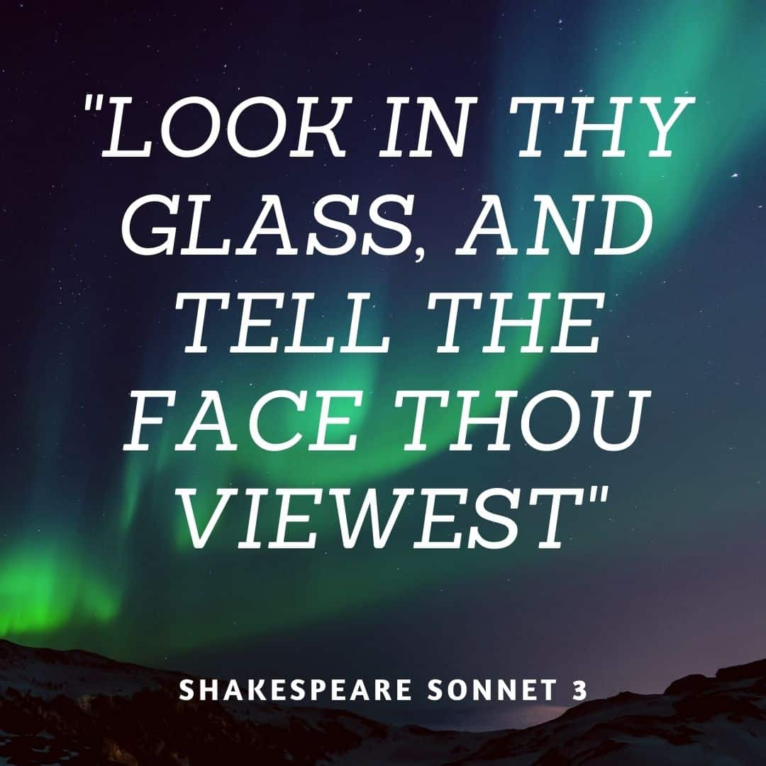 Sonnet 3 Look In Thy Glass And Tell The Face Thous Viewest