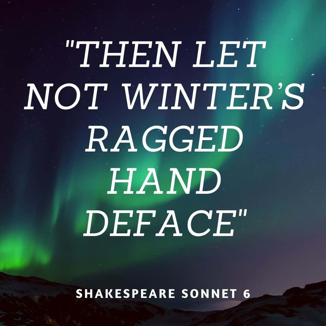 Sonnet 6 Then Let Not Winter S Ragged Hand Deface