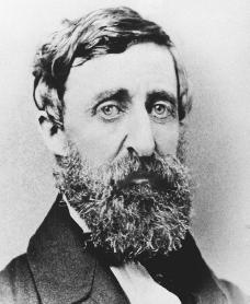 Image result for thoreau sister